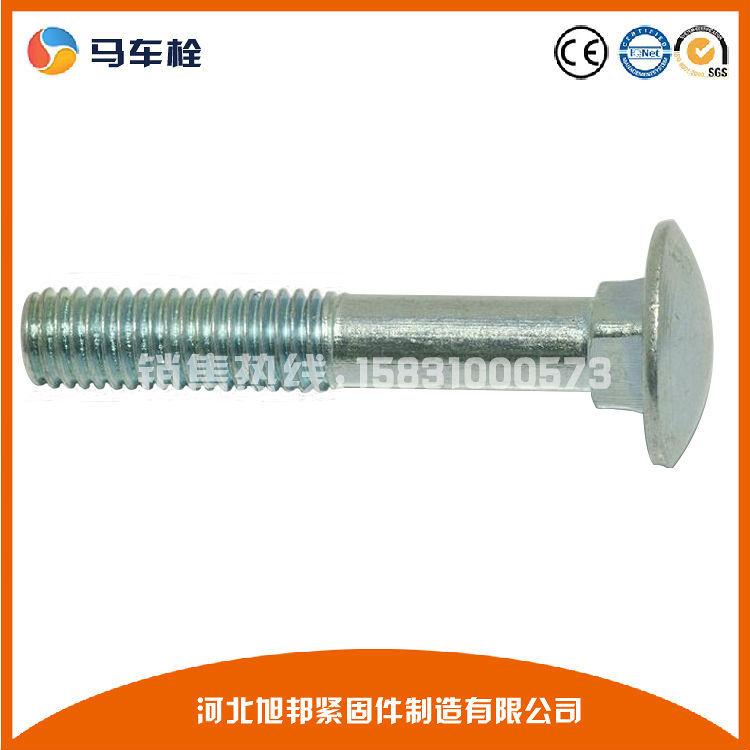 永年厂家高强度马车螺栓 Q235螺栓碳钢马车螺栓