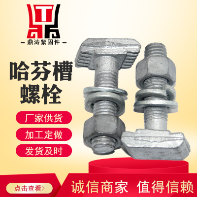 永年厂家哈芬槽T型螺栓 国标4.8级热镀锌T型带齿螺丝