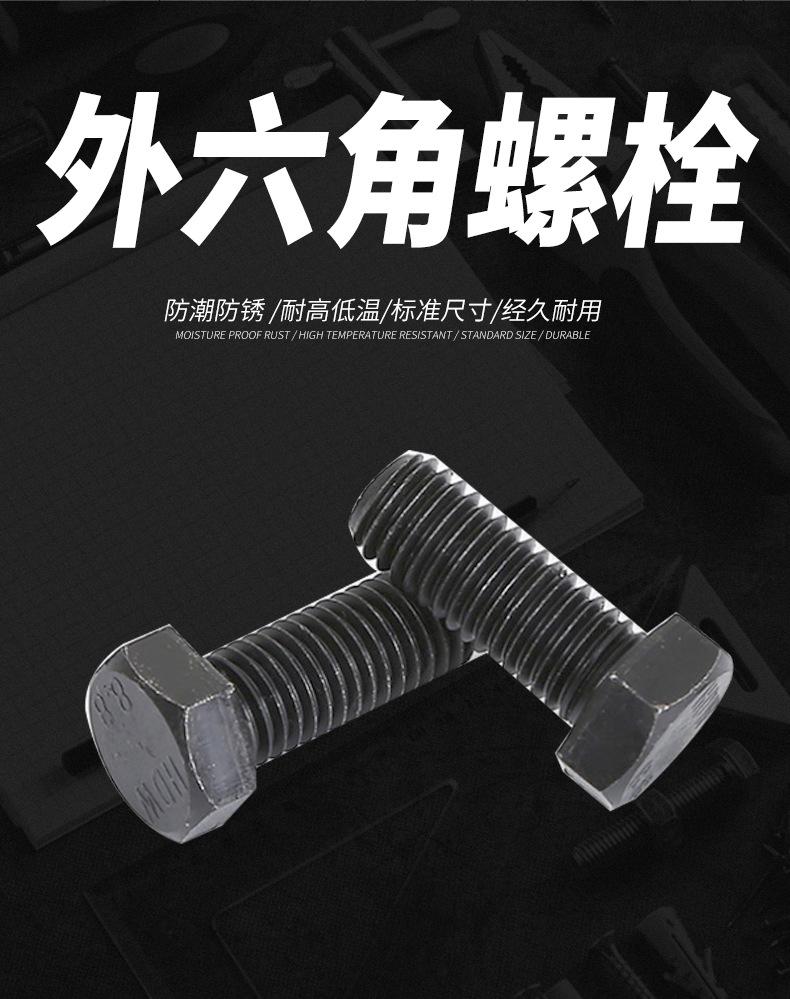 永年厂家 高强度国标螺栓